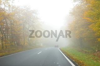 Nebel im Wald und auf der Straße