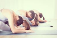 Group of young sporty attractive women in yoga studio, practicing yoga lesson with instructor, sitting on floor in forward bend yoga sana posture. Healthy active lifestyle, working out indoors in gym