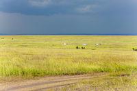 Summer thunderstorm over the savannah