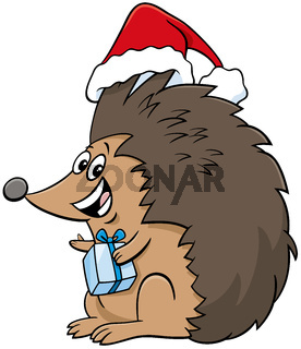 cartoon hedgehog character with gift on Christmas time