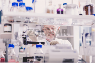 Senior male life scientist researching in the laboratory.