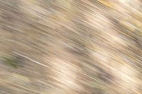 Background from beige stripes and blurred dark and light areas