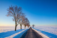 Empty road through snow-covered field after a blizzard at sunrise.