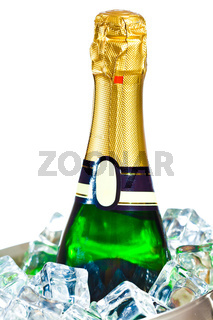 isolated champagne bottle in ice
