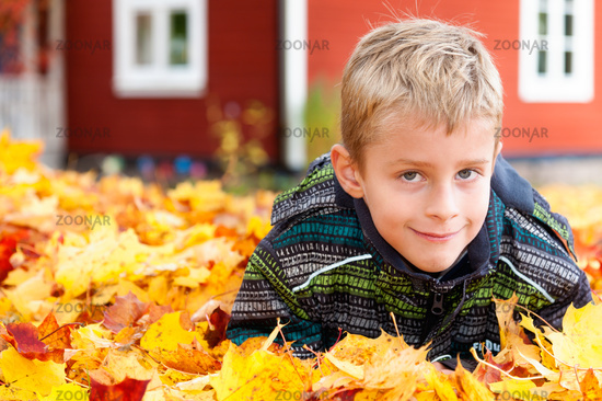 Cute young boy playing in autumn leaves