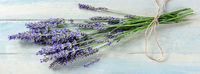 Lavender bouquet panorama on a rustic wooden background, aromatic lavandula