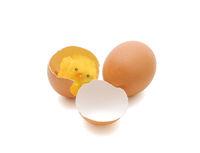 Toy chicken in egg