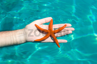 A red starfish with a wonderful blue sea background