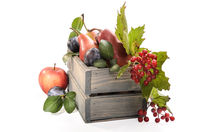 fruits and berries in a wooden box on a white background with soft shadow