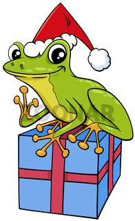 cartoon frog animal character with gift on Christmas time
