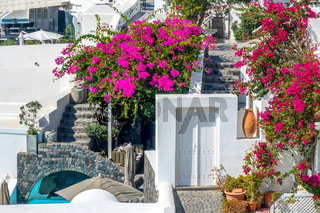Small Courtyards With Flowers on the Terraces of Santorini