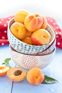 Frische Aprikosen in kleinen Schuesseln
