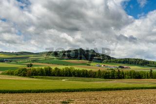 Hegaulandschaft mit Blick zum Hohenstoffeln, Landkreis Konstanz, Baden-Württemberg, Deutschland