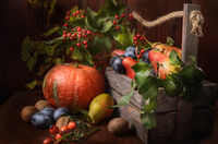 pears and plums with a branch of wild rose in a wooden box on a dark wooden background in a rustic style