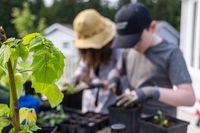 Kids planting in pots in a home garden