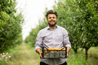 Farmer showing harvest of fresh sweet apricots