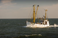 Fishing trawler on the North Sea
