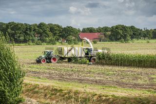 Corn harvest vehicles distant view phase 2