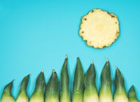 Fun minimalistic summer background with sun and gras on turquoise sky made by pineapple