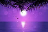Tropical Pink Sunset