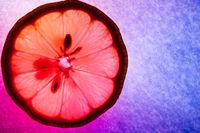 Lemon thin slice, macro capture, colorfully illuminated and back lit