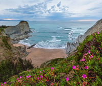 Spring sunset sea rocky coast landscape with small sandy beach  and pink flowers in front (Arnia Beach, Spain, Atlantic Ocean).