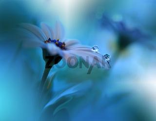 Beautiful macro shot of magic flowers.Border art design. Magic light.Extreme close up macro photo.