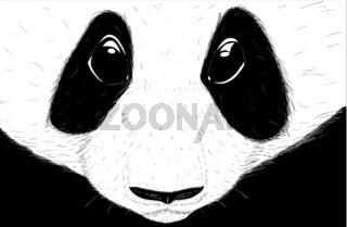 Hand-drawn EPS 8 Vector illustration of cute Panda 3