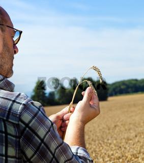 Landwirt auf einem Weizenfeld