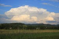 Impressive scene in early summer. Big white cumulus cloud building up. Scene near Wetzikon, Zurich.