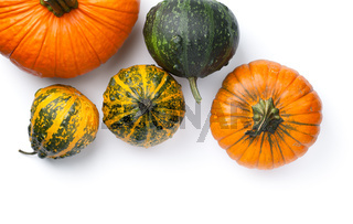 Autumn Pumpkins Isolated On White Background
