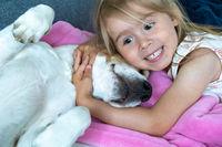Happy Child cuddle a beagle dog best friend on sofa.