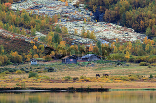 Alter Bauernhof im Dovrefjell