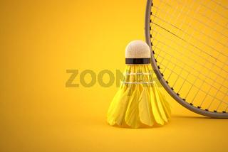 Badminton feather shuttlecock by badminton racket