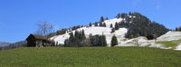 Green meadow and snow covered hill in Gsteig bei Gstaad.