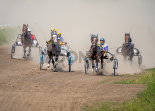 Five Horses Compete in Harness Racing on a Summer Day