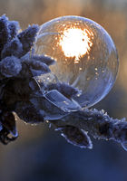 Freezing soap bubble with ice crystals and sun, Witten, North Rhine-Westphalia, Germany, Europe