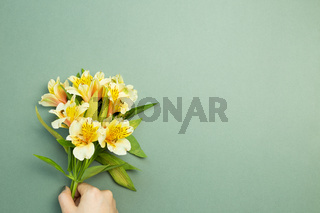 Hand holding yellow Alstroemeria flowers bouquet on green background. flat lay, top view, copy space