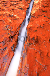 Water Flowing through Crack in Zion National Park near the Subway