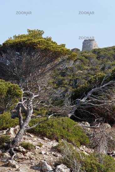 Torre Embucada at Cala Ratjada (Mallorca)