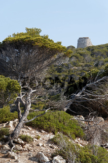 Torre Embucada bei Cala Ratjada auf Mallorca