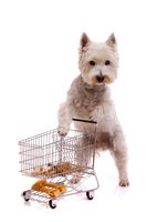 White Dog Shopping