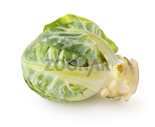Brussel sprouts isolated