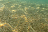 Underwater photo, sea bottom in shallow water, sun shining, light refracting on sand dunes. Abstract marine background.