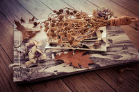 Memories - stock of old and vintage photos on wooden background