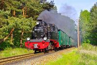 Ruegen Dampflock Rasender Roland- island Ruegen steam locomotive called Rasender Roland