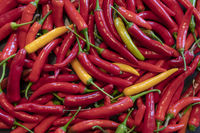 Background from fresh jumbled ripe red and yellow pepperonis / Chilis