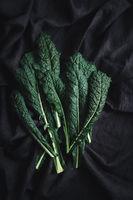 Cavolo nero black kale