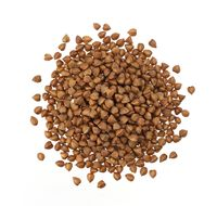 Pile of buckwheat seeds isolated on white, top view