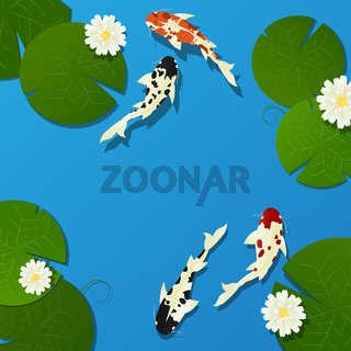 Koi fish and lotus
